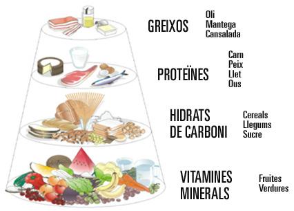 http://www.vedoque.com/juegos/los-alimentos.swf?idioma=es