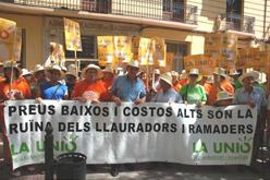 Una protesta de llauradors a Xàtiva, aquest estiu.