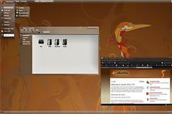 Intrepid Ibex, lúltima versió d'Ubuntu.