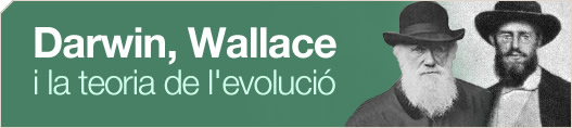 Darwin, Wallace i la teoria de l'evoluci�