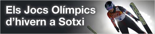 Els Jocs Olímpics d'hivern a Sotxi