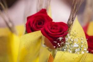 Sant Jordi 2014, solidari i reivindicatiu