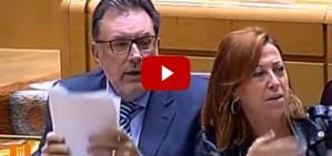'Visca Catalunya!', crida el portaveu de CiU al senat, indignat amb Rajoy