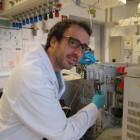 Un investigador valenci�, a l'equip que ha seq�enciat el primer genoma hum� trobat a Eur�sia